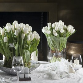 Bouquet de Tulipes