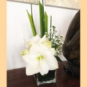 Centre de table amaryllis 3
